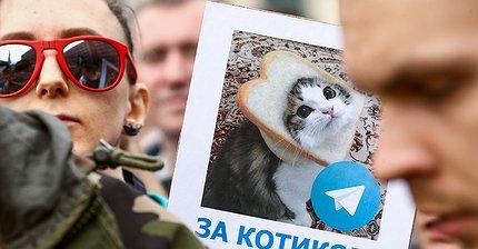 В России запретят анонимное использование мессенджеров