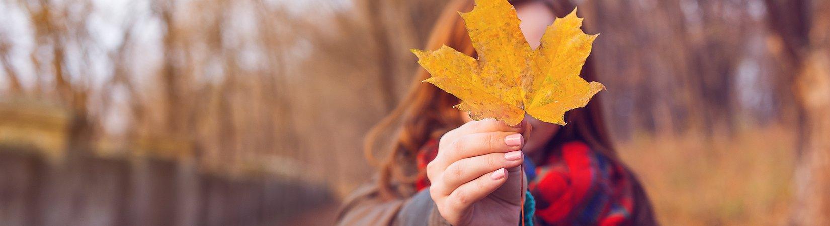 Aktien, mit denen man diesen Herbst verdienen kann