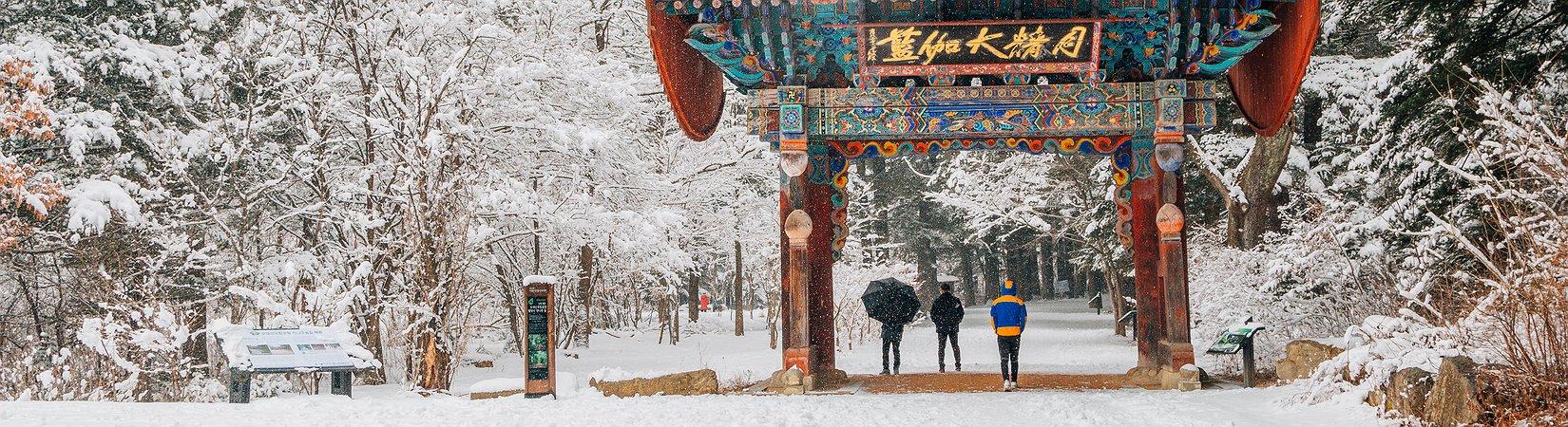 Saiba mais sobre Pyeongchang, condado que acolhe os Jogos Olímpicos de inverno de 2018