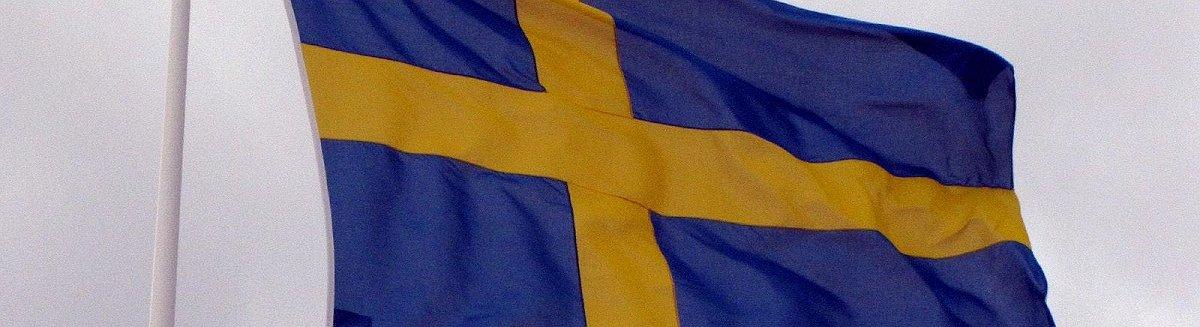 """Svezia: """"Attenzione a questi rischi legati alle Ico"""""""