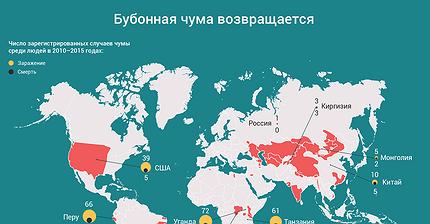 График дня: Бубонная чума возвращается