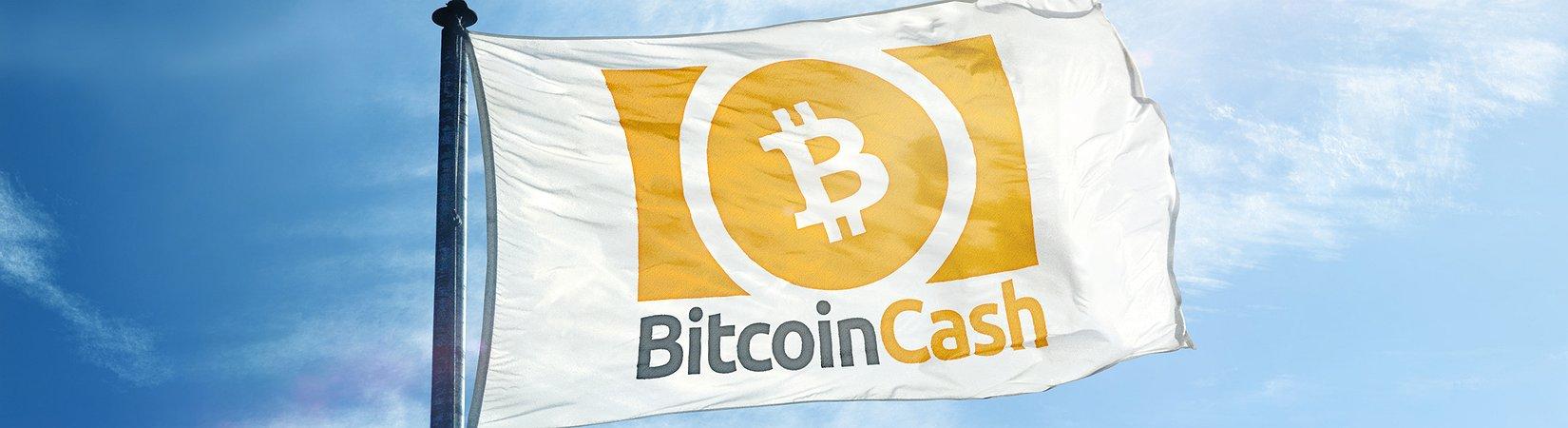 Coinbase lanza y deja de cotizar el Bitcoin Cash después de un fuerte aumento de precio