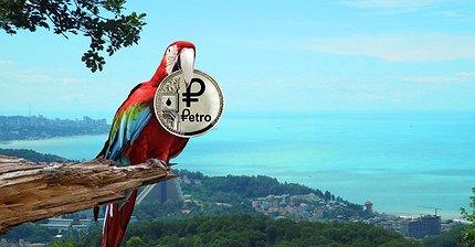 Что нужно понимать о венесуэльской криптовалюте Petro