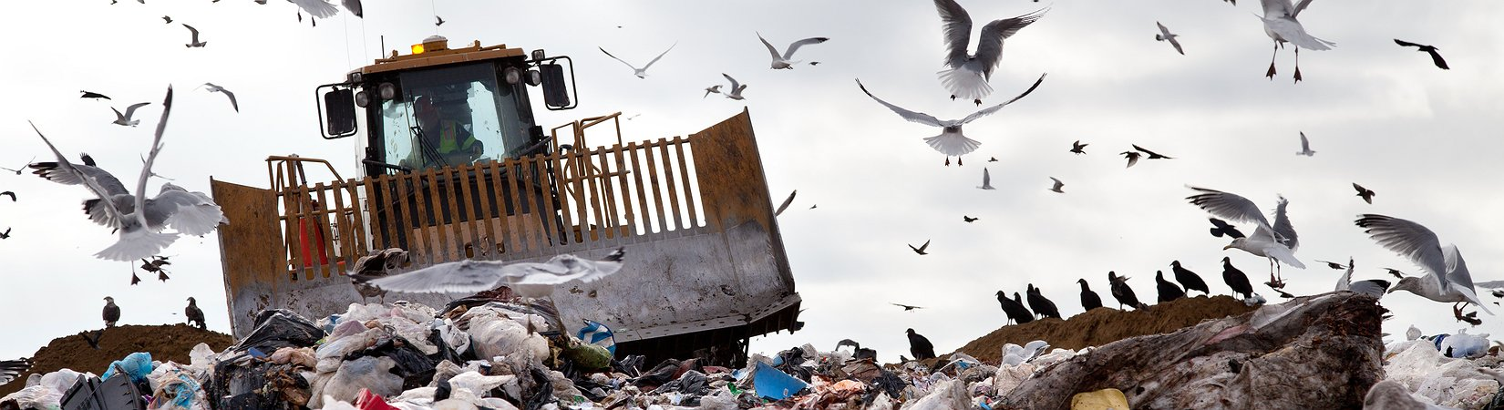 Moody's назвало причины «мусорного» рейтинга России