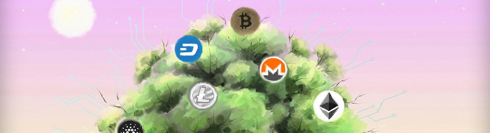 Обзор рынка криптовалют: Главные новости 29.11.2017