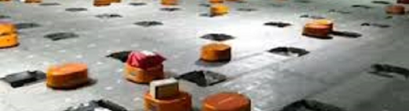 Video shows robot revolution in action at Chinese parcel distribution centre