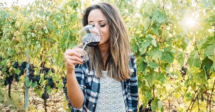 Как купить дешевое вино и не облажаться