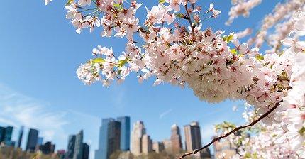 5 лучших акций для покупки в этом мае