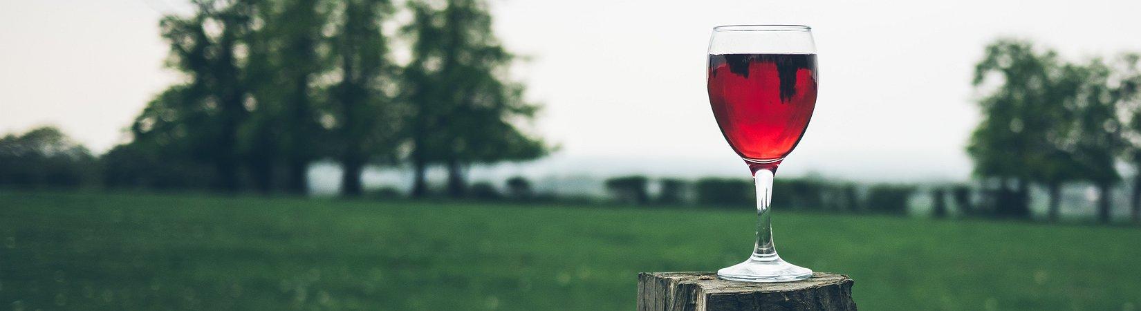 3 Factos curiosos sobre o vinho