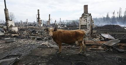 Фото дня: В Сибири бушуют лесные пожары