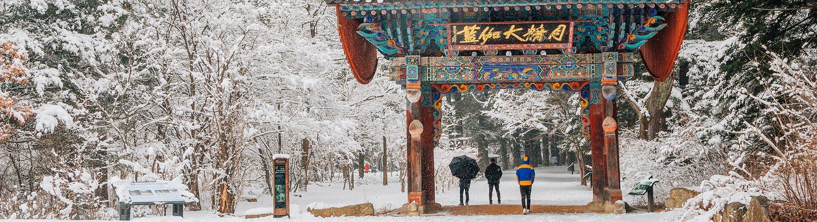 Así es la vida en Pyeongchang, la capital de los Juegos Olímpicos de 2018