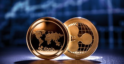 AlphaPoint запускает криптобиржу с базовой валютой Ripple