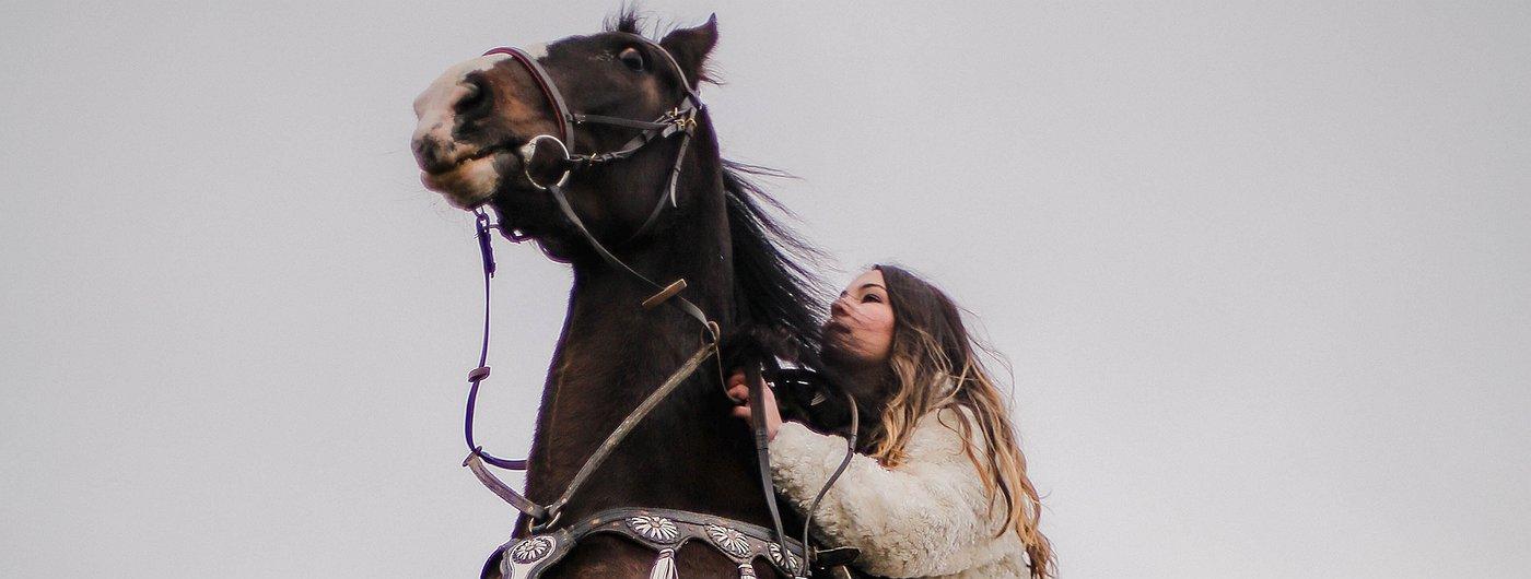 Придержите лошадей: HODL — лучшая стратегия для биткоина