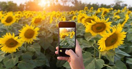 10 странных, но полезных аксессуаров для iPhone