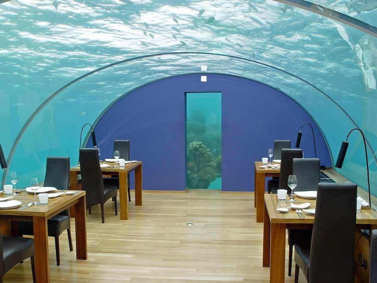 вызывают нём подводный ресторан в москве фото перед ними
