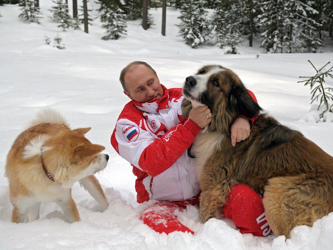 Чем больше узнаю людей - тем больше нравятся собаки ...